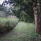 walkway by aussieazsx