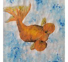 Bubble eyed goldfish Photographic Print