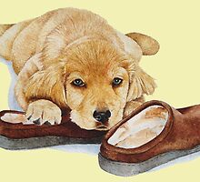 cute puppy golden retriever cuddling slippers by pollywolly