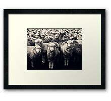 Hey! I Was Going To Say That! Framed Print