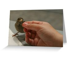 ..the hand thats feeds you... Greeting Card