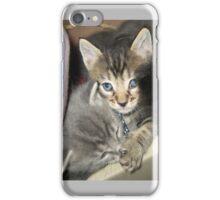 Kittens Keep A Secret iPhone Case/Skin