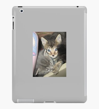 Kittens Keep A Secret iPad Case/Skin
