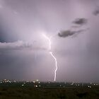 lightning in june by Terrell Bird