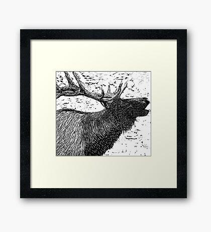 Woodcut Bull Elk Framed Print
