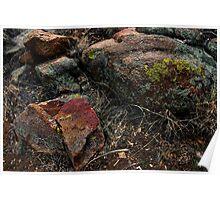 Rock Colors in Arizona Landscape Poster