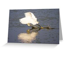 Snowy Egret with a Heart Reflection Greeting Card