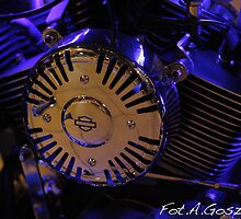 Blue light  Harley - Davidson. by Brown Sugar .Views (439)  Favorited by (3) Featured* *  thank you so much !!!Thank you buddies !!! by © Andrzej Goszcz,M.D. Ph.D