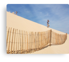Taking the Fast Route Down! Metal Print