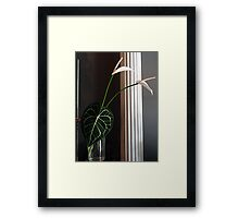 Lily Leaf Framed Print