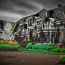 McMansion by Peter Maeck