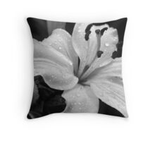 Tell me about purity and strength Throw Pillow