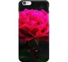 My Love is Like a Rose iPhone Case/Skin