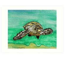 Sea Turtle art Art Print