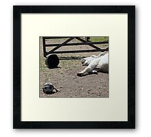 Have you celebrated a bit too much Laurie? Framed Print