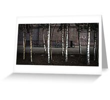 Bicycles & Silver Birch Greeting Card