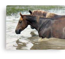 """Horses with Attitude no. 7, 'Race Ya Across the Pond, Joe. Loser Buys a Round!'""... prints and products Metal Print"