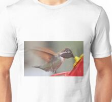 ADOLESCENT WHITE EARED HUMMINGBIRD ON FEEDER PERCH Unisex T-Shirt