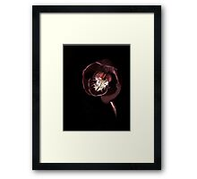 A Thing of Beauty............ Framed Print