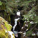 Avalanche creek 2  by Borror