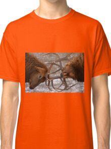 Bull Elk In The Rut Classic T-Shirt