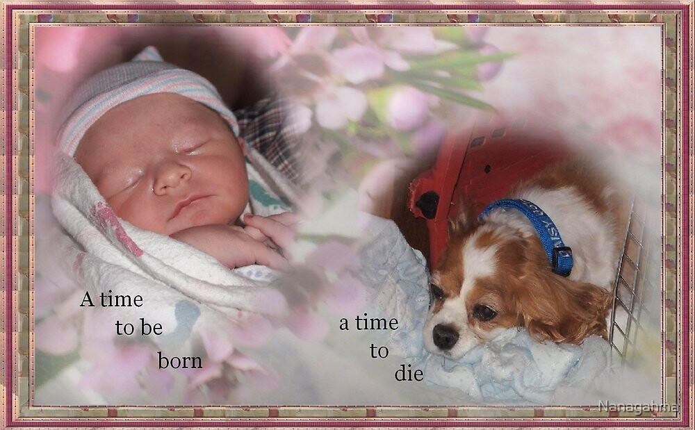 A time to be born. . . A time to die by Nanagahma