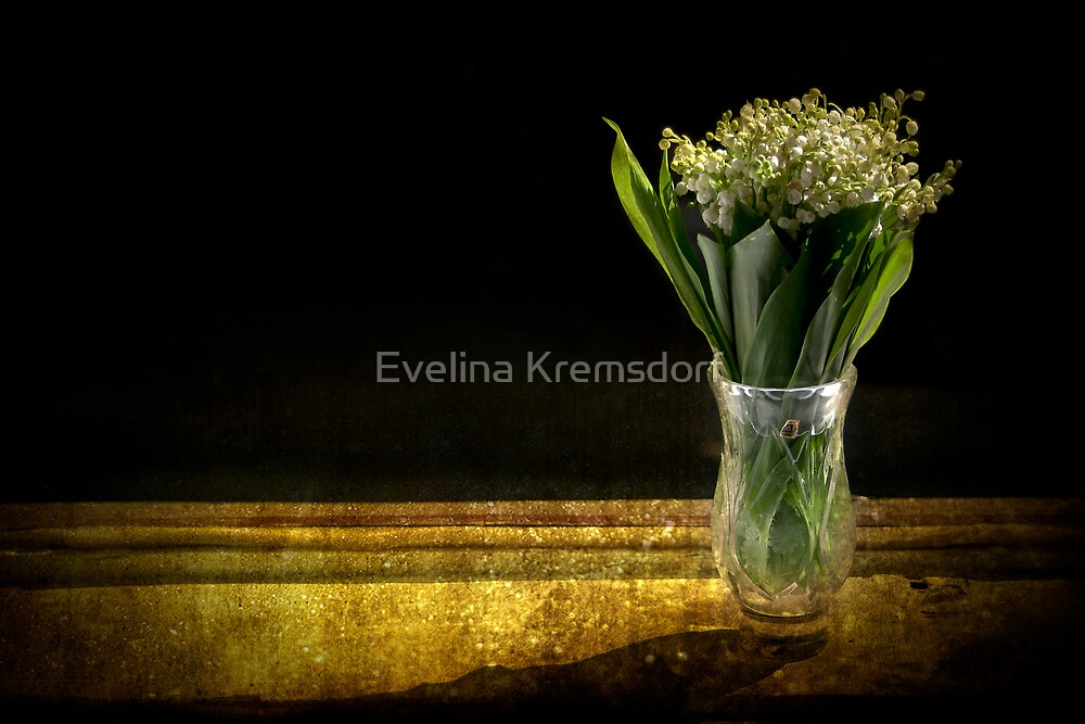 Beauty of the Valley by Evelina Kremsdorf