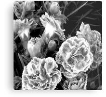 Black & White Floral Metal Print