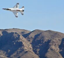 USAF Thunderbirds Solo by Henry Plumley