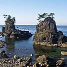Shrine Island, Noto Peninsula, Japan. by johnrf