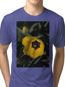 Sunny Yellow in the Shadows - a Cheerful Spring Tulip Tri-blend T-Shirt