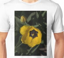 Sunny Yellow in the Shadows - a Cheerful Spring Tulip Unisex T-Shirt