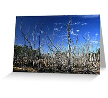 Dead Swamp Greeting Card