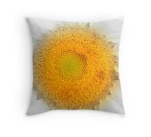 hide and seek. Throw Pillow