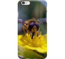 Photo of a Hoverflie on autumn hawkbit iPhone Case/Skin