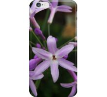 Society Garlic iPhone Case/Skin