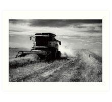 Canola Harvest, Coorong Art Print