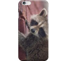 Just Another Brick in the Wall (to climb) iPhone Case/Skin
