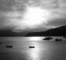 Evening in Akaroa by Paul Finnegan