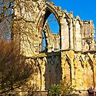 Ruins of St Mary&#x27;s Abbey  -  York #2 by Trevor Kersley