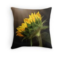 Shine Your Light on Me Throw Pillow