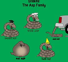 Snakes in the Asp Family by Rich Diesslin