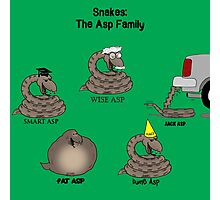 Snakes in the Asp Family Photographic Print
