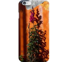 Urban Wild Flowers and Peeling Paint iPhone Case/Skin