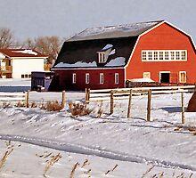 Winter Scene near Edmonton, Alberta, Canada by Adrian Paul