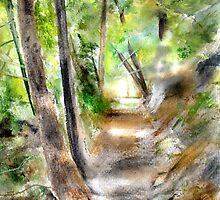 Pathway in  Potami by Colin Cartwright