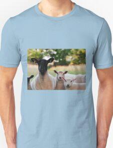 Who ewe looking at T-Shirt
