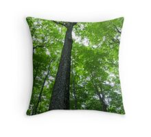 Tree Canopy Throw Pillow