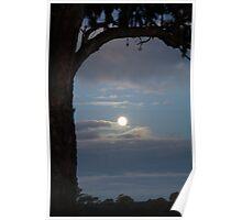 Moonlight Over Coonawarra Poster