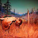 Moose (Algonkian) by Larry Trupp
